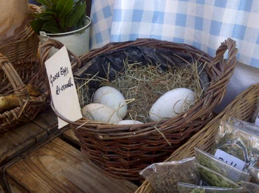 A bit of everything, including goose eggs!